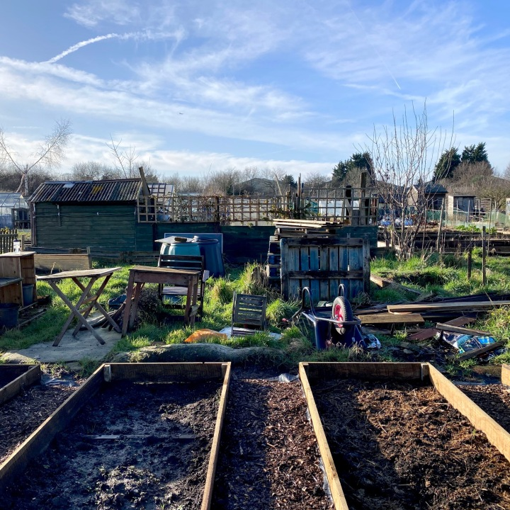 Our Allotment Journey So Far & Planning for 2020
