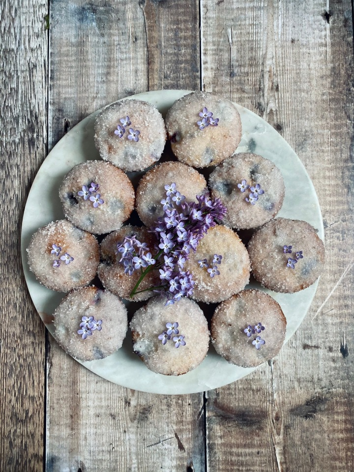Lilac and BlueberryMuffins